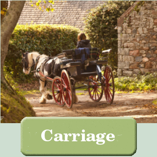 Sark Carriage